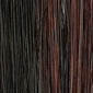 Dark Brown / Dark Auburn Frost