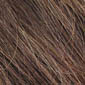 Chestnut Brown with Medium Ash Brown Highlights