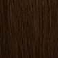 Chestnut Brown with Medium Auburn Highlights
