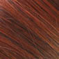 Chestnut Brown / Medium Brown / Warm Auburn