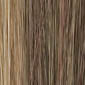 Golden Brown Lightening to Dark Blonde Mix in Front