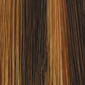 Golden Brown Lightening to Golden Blonde Mix in Front