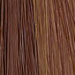 Medium Golden Brown mixed with Light Golden Brown highlighted with Strawberry Blonde