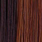 Medium Dark Brown frosted with Light Auburn
