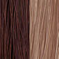 Light Chestnut Brown frosted with Champagne Blonde