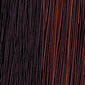 Dark Auburn highlighted with Copper Red