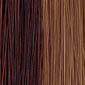 Dark Auburn highlighted with Honey Blonde