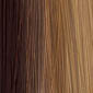 Light Chestnut Brown with an undertone of Golden Blonde