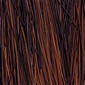 Dark Brown mixed and tipped with Light Auburn