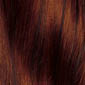Dark Copper Red with Dark Brown highlights