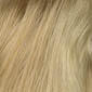 Golden Blonde with Light Gold Blonde highlights