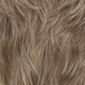 Light Ash Brown/Light Blonde Frosted