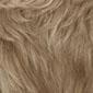 Brownish Blonde w/ Light Ash Blonde Frost