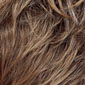 Light Ash Brown Frosted and Tipped with Light Golden Blonde