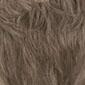 Light Ash Brown with 25% Gray