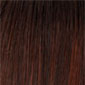 Dark Red & Brown Blend (Rooted Dark)
