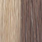 Light Golden Brown (18) forsted with Light Pale Blonde (22)