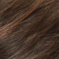 Dark brown with dark brown & honey brown 50/50 blend highlights