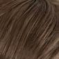 Chestnut Brown base with Dark Beige Blonde highlights