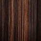 Medium Dark Brown frosted with Copper Blonde