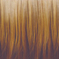 Gradual Ombre. Platinum Blonde top, Honey Blonde bottom