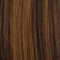Darkest Brown frosted with Light Golden Brown