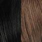 Off-Black with Dark Auburn highlights