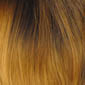 Two-Tone Off-Black on top of Yellow Blonde