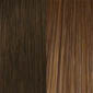 Medium Chestnut Brown tipped with Golden Brown