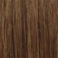 Medium Chestnut Brown tipped with Russet