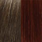 Medium Chestnut Brown tipped with Dark Auburn