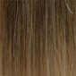 Light Chestnut Brown tipped with Honey Blonde