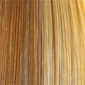 Blonde Highlights , 4 Color Blend of (14), (24), (613), (88)