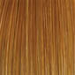 Blonde Highlights, 4 Color Bend of (27), (28), (33), (613)